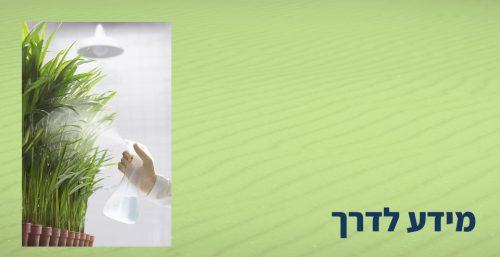 להפוך את הידע שלך למוצרי מידע סדנאיים עם הכנסה סדירה בת-חן שפירא מתארחת אצל שמוליק פרוימוביץ'